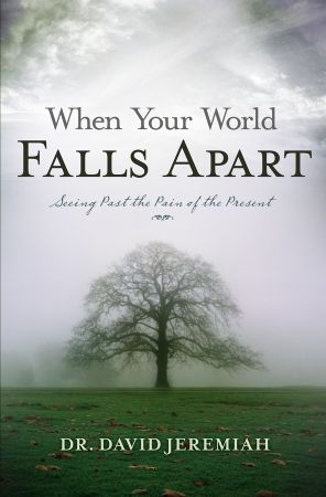 When Your World Falls Apart Book
