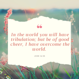 Meme: In the world you will have tribulation; but be of good cheer, I have overcome the world. John 16:33