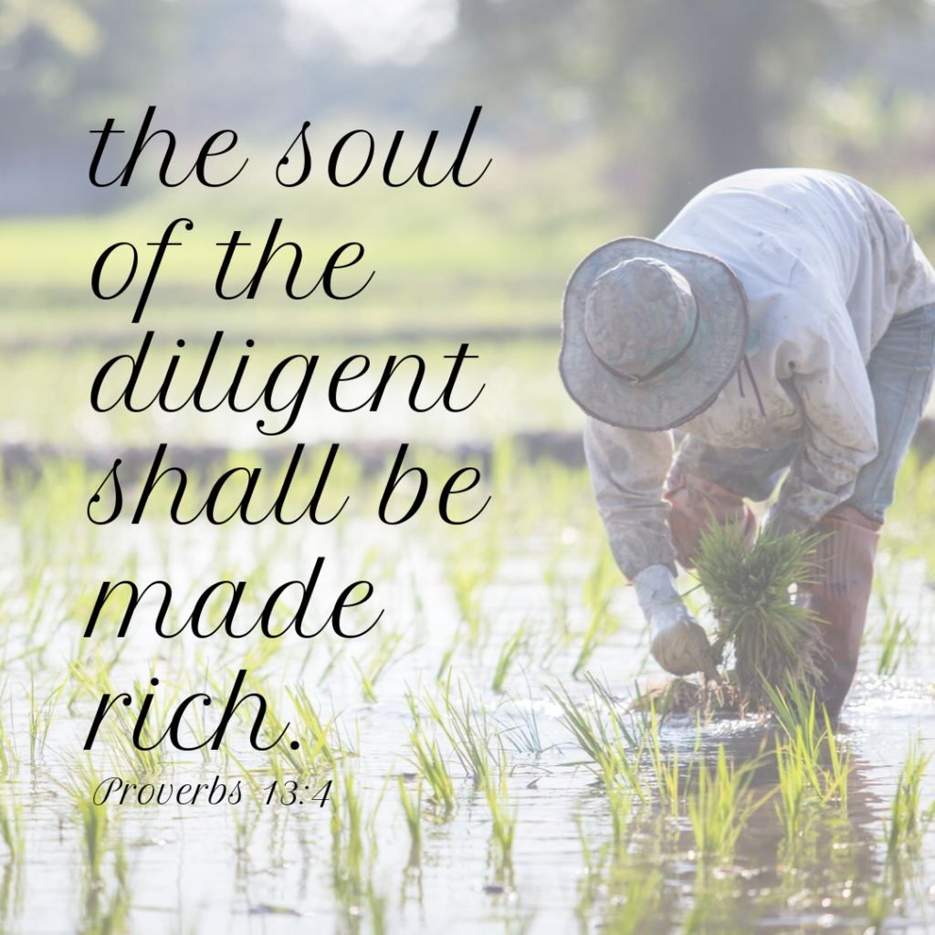 Meme: The soul of the diligent shall be made rich. Proverbs 13:4