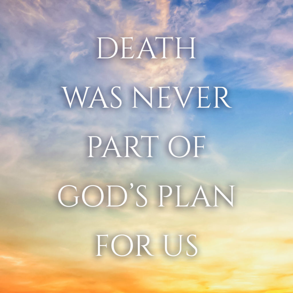 Meme: Death was never part of God's plan for us