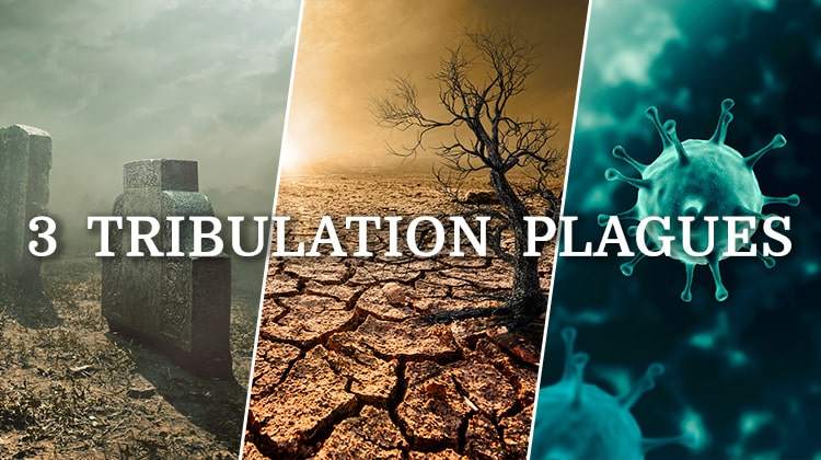 What Are the 3 Tribulation Plagues